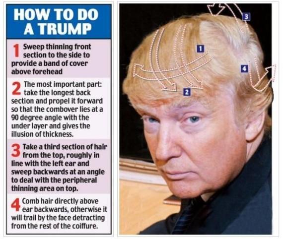 trump hair 1