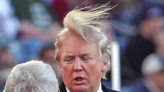 trump hair 4